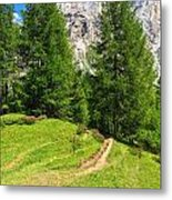 alpine path in Contrin Valley Metal Print