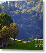 Alpine Summer Scene In Switzerland Metal Print
