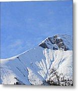 Alps Vista  Metal Print