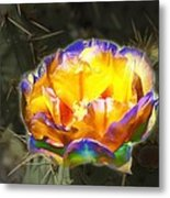 Altered Yellow Prickly Pear Flower Metal Print