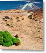 Altiplano Landscape Metal Print