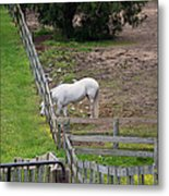 Always Greener On The Other Side Metal Print