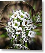 Alyssium Reflected Metal Print