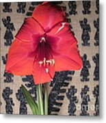 Amaryllis Flower With Guatemalan Mountain Blanket Metal Print by Elizabeth Stedman