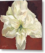 Amaryllis With Red Metal Print