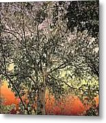 Glowing Sky Metal Print