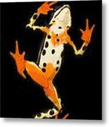 Amazon Harlequin Toad Metal Print