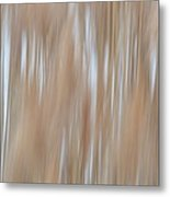 Amber Waves Of Grain Metal Print