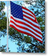 America The Beautiful Metal Print