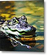 American Alligator 1 Metal Print