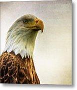 American Bald Eagle With Flag Metal Print by Natasha Bishop