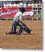 American Cowboy Thrown From A  Bucking Rodeo Bronc Metal Print