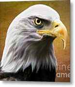 American Eagle Metal Print by Shannon Rogers