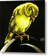 American Gold Finch Metal Print