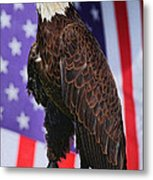 American Honor Metal Print