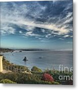 American Light Metal Print