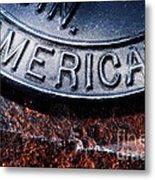 American Metal Print