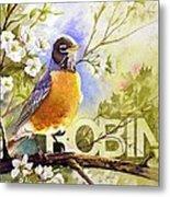 American Robin And Wild Plum Metal Print