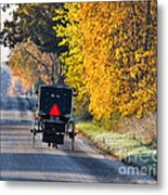 Amish Buggy And Yellow Leaves Metal Print
