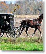Amish Buggy Metal Print