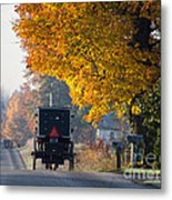 Amish Buggy Fall 2014 Metal Print