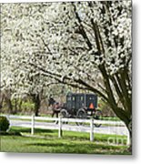 Amish Buggy Fowering Tree Metal Print