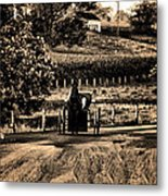 Amish Buggy On A Country Road Metal Print