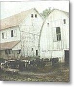 Amish Dairy Metal Print