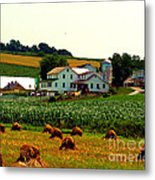 Amish Farm On Laundry Day Metal Print