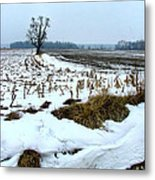 Amish Field In Winter Metal Print