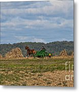 Amish Man Boy Buggy Metal Print