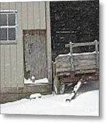 Amish Snowfall Metal Print