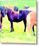 A Horse Most Of All Wanna Be One Among The Other Horses Metal Print