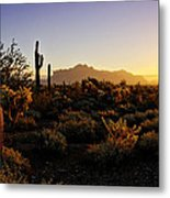 An Arizona Morning  Metal Print