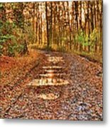An Autumn Track Metal Print by Dave Woodbridge