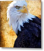 An Eagles Standpoint Metal Print