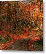 An English Autumn Metal Print