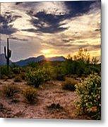 An Evening In The Desert  Metal Print