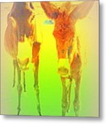 Donkey Mother And Son On An Extremely Hot Day  Metal Print