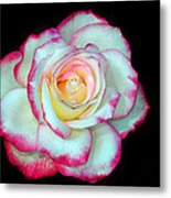 An Eyecatcher Metal Print