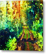 An Uncertain Path Metal Print