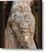 Ancient Expression Of Beauty Metal Print