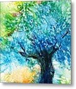Ancient Olive Tree  Athenas Gift  Metal Print
