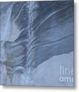 Ancient Upholstery Metal Print