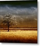 And The Rains Came Metal Print