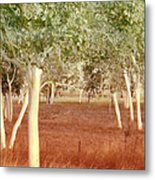 And The Trees Danced Metal Print