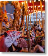 And The Zebra Is In The Lead Metal Print