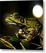 And This Frog Can Sing Metal Print by Bob Orsillo
