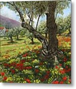 Andalucian Olive Grove Metal Print