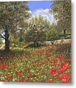 Andalucian Poppies Metal Print